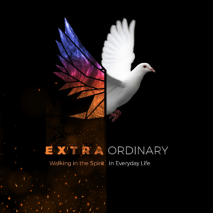 The Extraordinary Mission